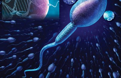 Scientists Identify Genetic Factors Responsible for Infertility Among Indian Men